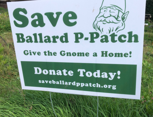 Save the Ballard P-Patch!