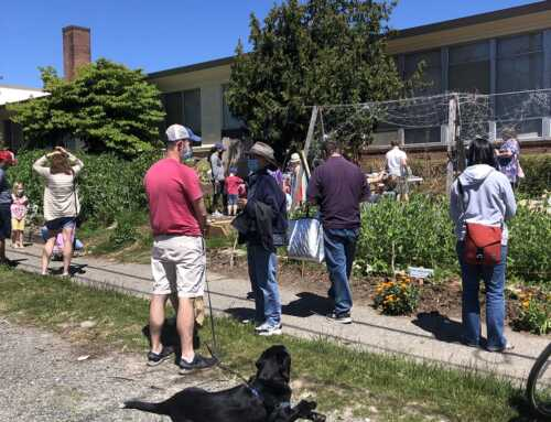 Growing Food and Community
